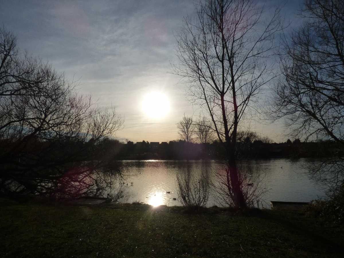 Kingfisher Country Park, Birmingham & Solihull - A wonderful open space!