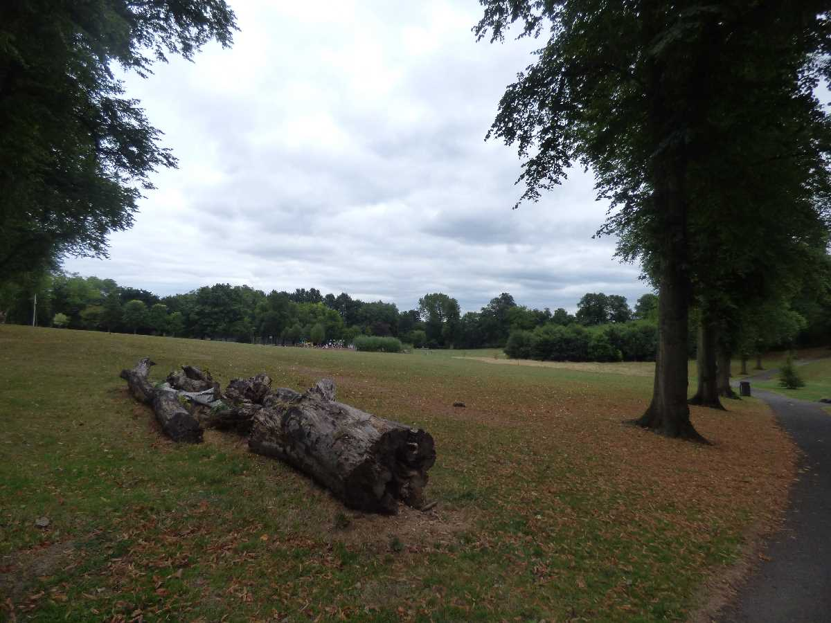 Cotteridge Park: the park near the Cross City Line