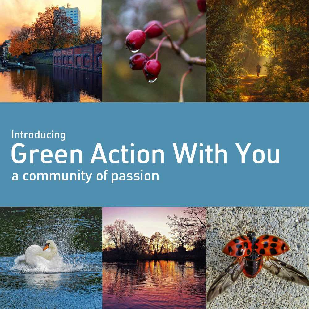 GreenActionWithYou - let us promote and support your initiative!
