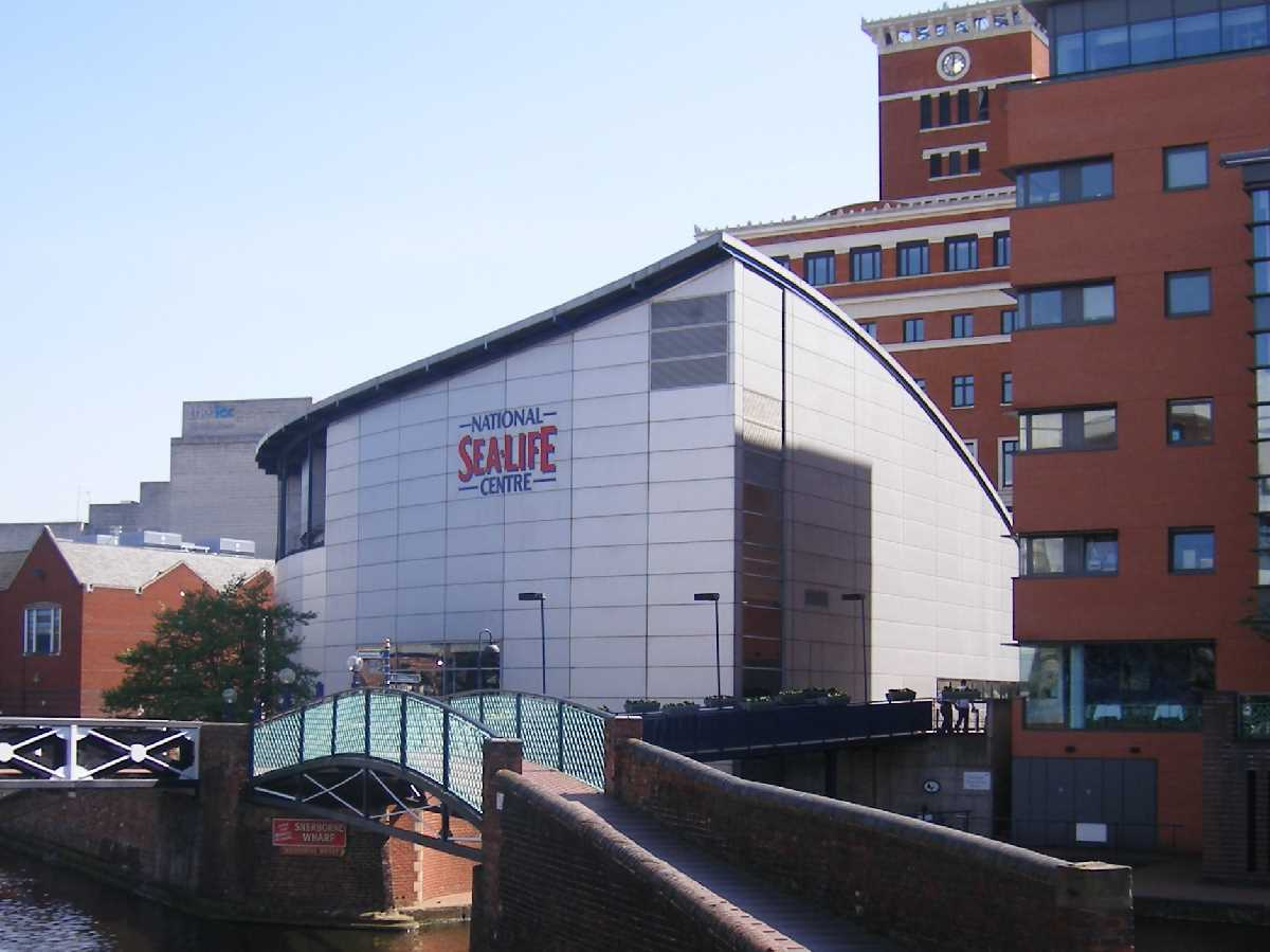 National Sealife Centre - A Birmingham Gem!